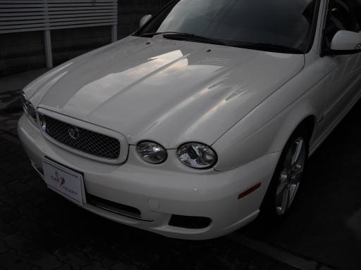 jaguarfin_24