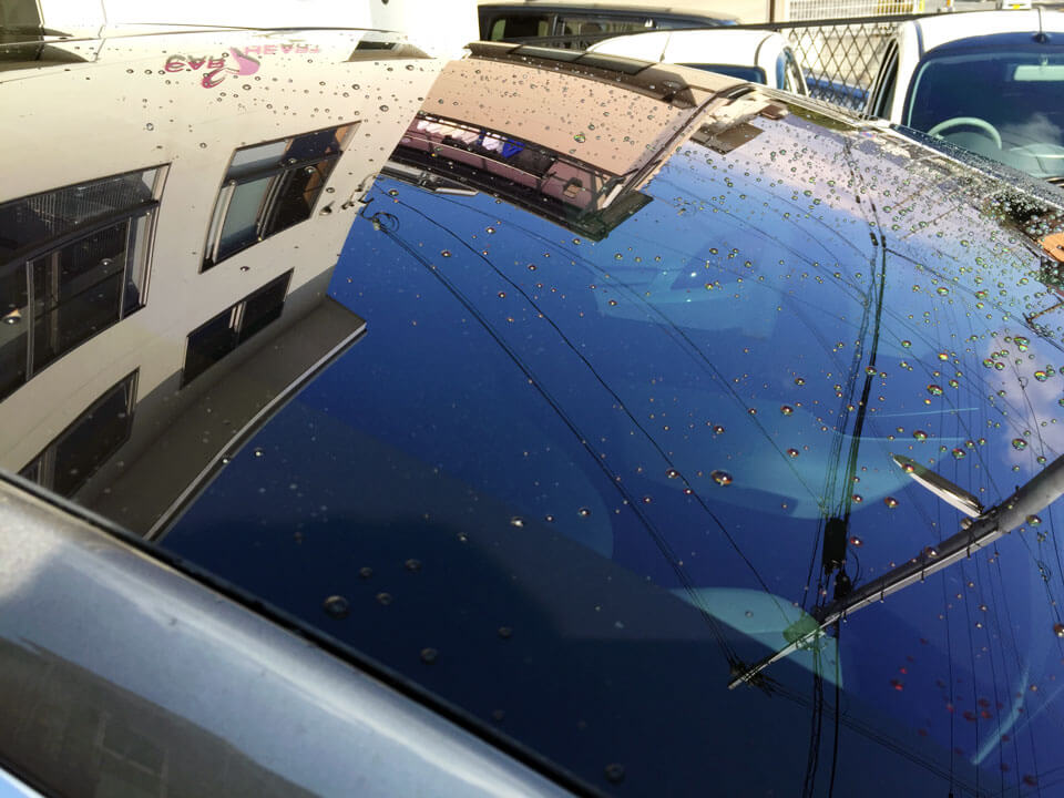 tesla model coating after